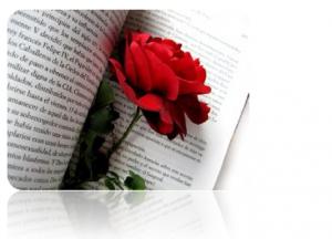 Día del Libro ... y una rosa